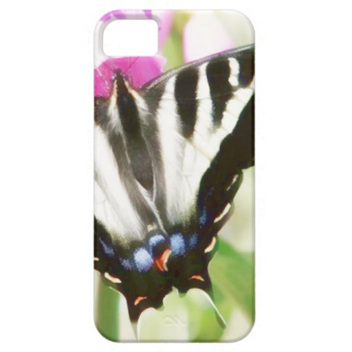 Swallow Tail Butterfly case iPhone 5 Cases