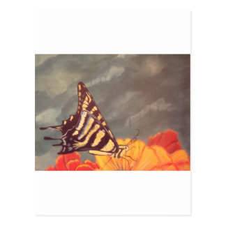 Swallow Tail Butterfly Postcard