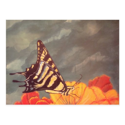 Swallow Tail Butterfly Postcards