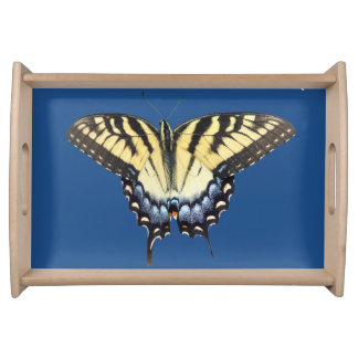 Swallow Tail Butterfly Food Trays
