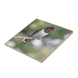 Swallow Tile