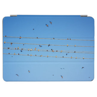 Swallows on wire iPad air cover