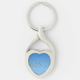 Swallows on wire Silver-Colored twisted heart key ring