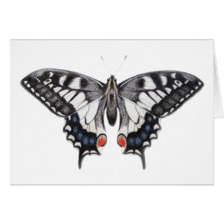 Swallowtail 2012 card