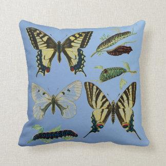 Swallowtail Butterflies, Caterpillars and Moth Cushion
