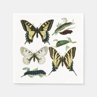 Swallowtail Butterflies, Caterpillars and Moth Disposable Serviette