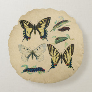 Swallowtail Butterflies, Caterpillars and Moth Round Cushion