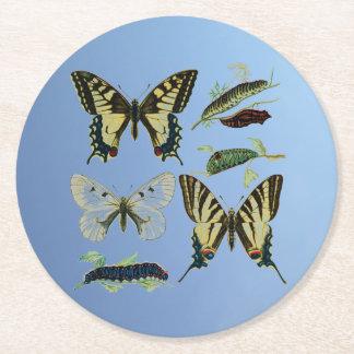 Swallowtail Butterflies, Caterpillars and Moth Round Paper Coaster
