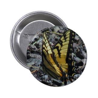 Swallowtail Butterfly Buttons