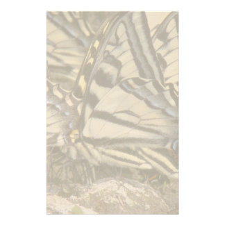 Swallowtail Butterfly Flowers Floral Wildlife Customized Stationery