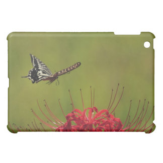 Swallowtail Butterfly flying near flower, Chiba Cover For The iPad Mini