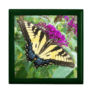 Swallowtail Butterfly Keepsake Gift Box