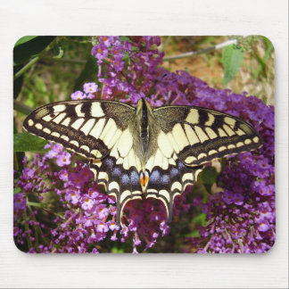 Swallowtail Butterfly Mouse Mat