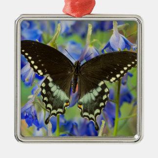Swallowtail Butterfly on blue Metal Ornament
