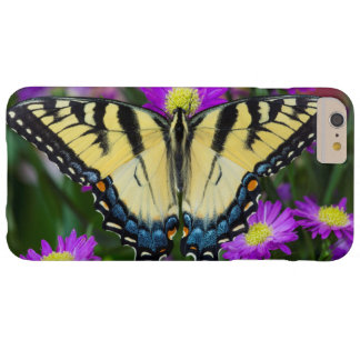 Swallowtail Butterfly on daisy Barely There iPhone 6 Plus Case