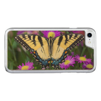 Swallowtail Butterfly on daisy Carved iPhone 8/7 Case