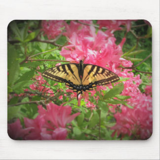 Swallowtail Butterfly on Pink Azaleas Mouse Pad