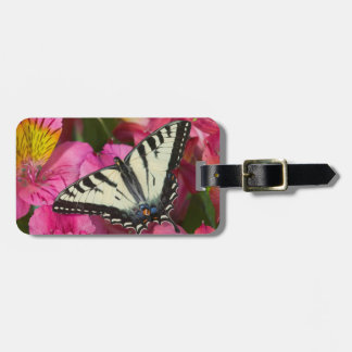 Swallowtail Butterfly on pink Luggage Tag
