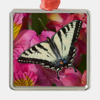 Swallowtail Butterfly on pink Metal Ornament