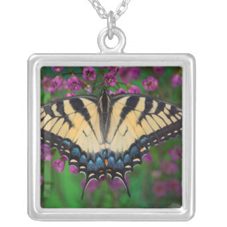 Swallowtail Butterfly on purple Silver Plated Necklace