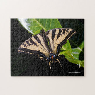 Swallowtail Butterfly on the Laurel Bush Puzzle
