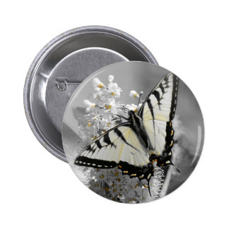 Swallowtail Butterfly Pinback Buttons