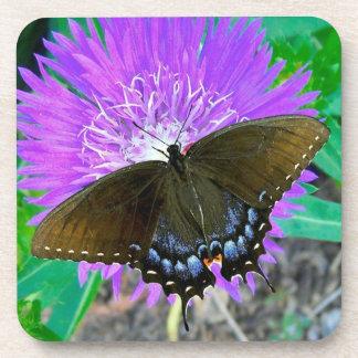 Swallowtail Butterfly, Purple Pixie Flower  Cork C Drink Coasters
