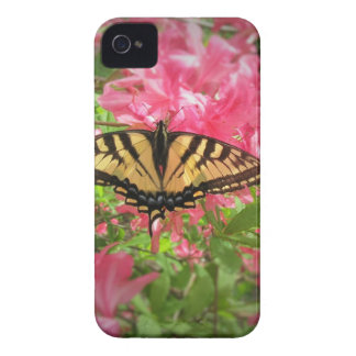 Swallowtail Butterfly Sits on Pink Azaleas iPhone 4 Cover