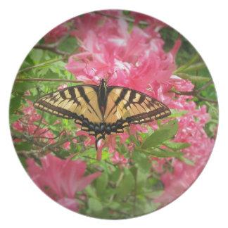Swallowtail Butterfly Sits on Pink Azaleas Plate