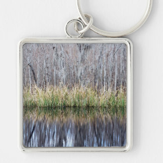 Swamp Reflection Key Chain