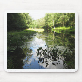 Swamp Reflections Mouse Pad