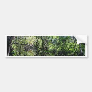 Swamp Song Bumper Sticker