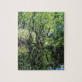 Swamp Song Jigsaw Puzzle