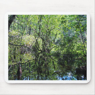 Swamp Song Mouse Pad