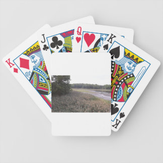 Swamp view bicycle playing cards
