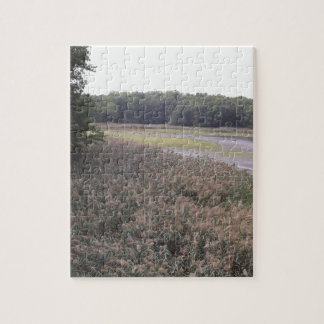 Swamp view jigsaw puzzle