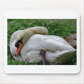 Swan 1 mouse pad