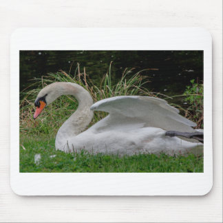 Swan 2 mouse pad