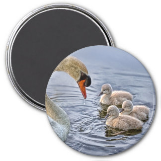 Swan and Babies Magnet