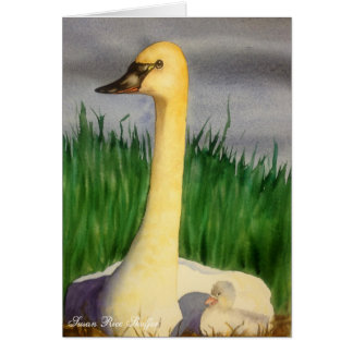 Swan and Cygnet Note Card