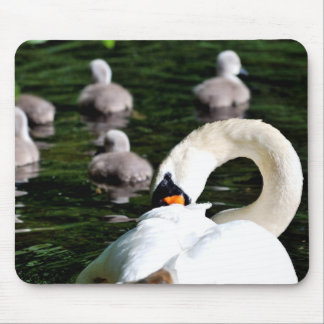 Swan and Cygnets Mouse Mat