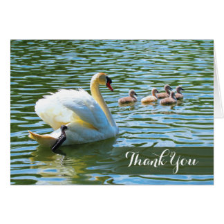 Swan and Cygnets Notecard
