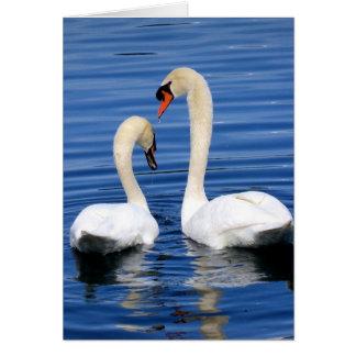 Swan couple notecard greeting card set
