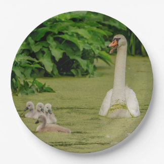 Swan Family 9 Inch Paper Plate