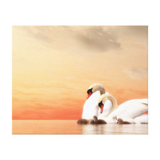 Swan family canvas print