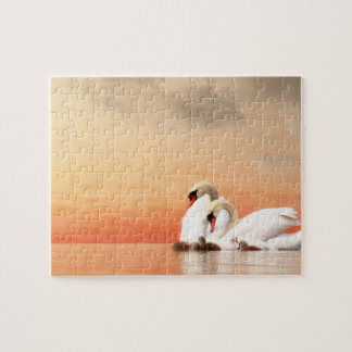 Swan family jigsaw puzzle