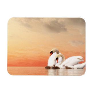 Swan family rectangular photo magnet