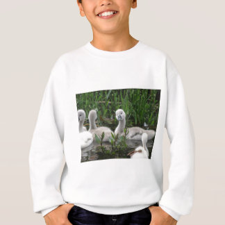 Swan in Wonder Sweatshirt