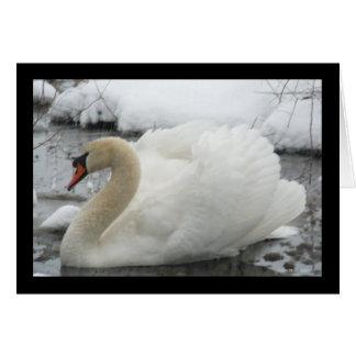 Swan King Greeting Card