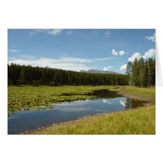 Swan Lake I at Grand Teton National Park Card